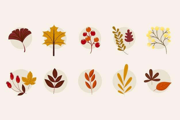 Diverses collections de feuillage d'automne