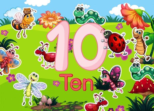 Dix différents modèles d'insectes