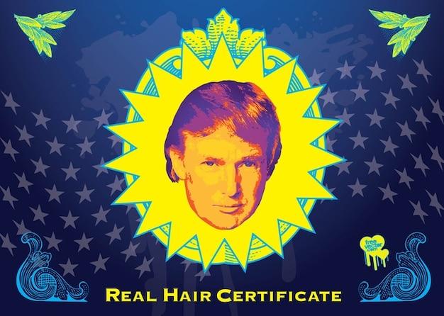 Donald trump vecteur de cheveux