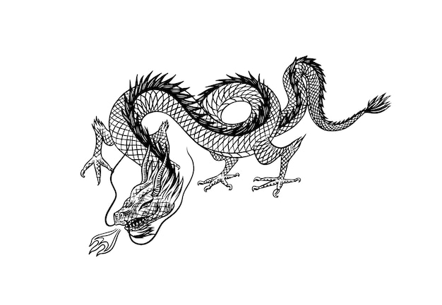 Dragon chinois isolé sur blanc
