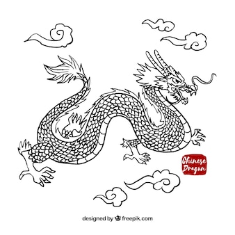 Dragon chinois traditionnel dessiné à la main
