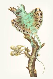 Dragon volant dessiné à la main