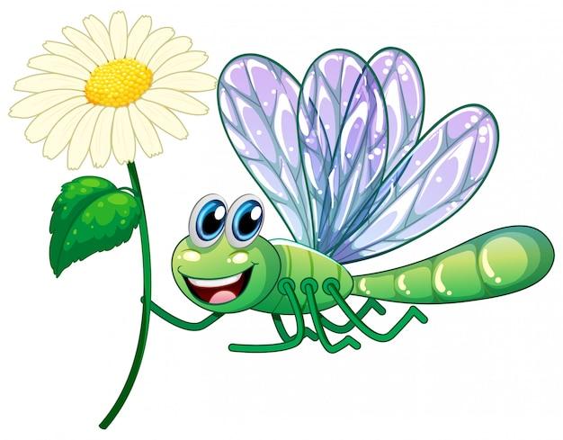 Dragonflying tenant une fleur sur fond blanc