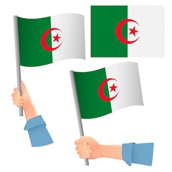 Drapeau de l'algérie en jeu de main