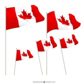 Drapeaux canadiens mis en