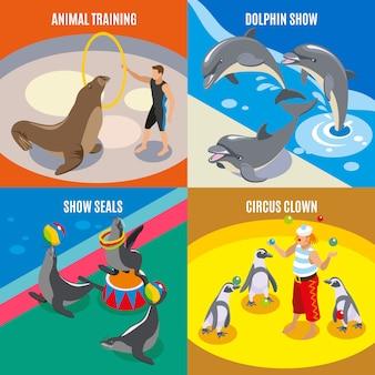 Dressage d'animaux cirque clown dauphin et phoques montrent des compositions isométriques