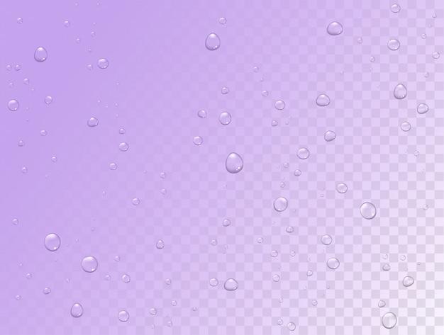 L'eau de pluie de vecteur tombe sur transparent
