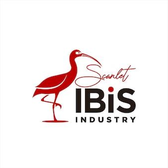 Écarlate, ibis, logo, amusement, moderne, vecteur