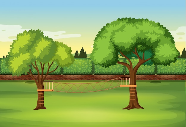 Échelle de corde sur un arbre dans la nature