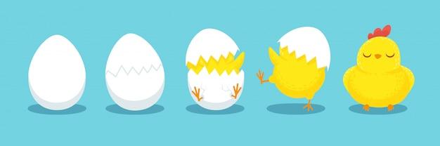 Éclosion de poulet, œuf de poule fêlé, œufs d'éclosion et dessin animé de poussins de pâques éclos