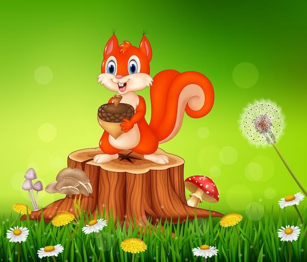 Écureuil de dessin animé tenant le cône de pin