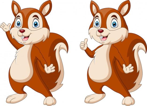 Écureuil drôle de dessin animé en agitant la main