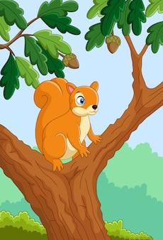 Écureuil drôle de dessin animé sur l'arbre