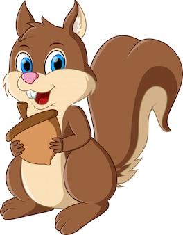 Écureuil d'illustration de dessin animé tenant des glands
