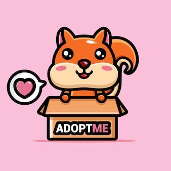 Écureuil mignon dans la boîte d'adoption