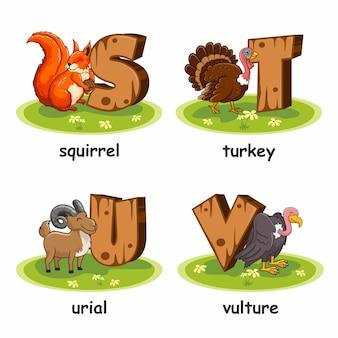 Écureuil turquie urial turquie dessin animé en bois alphabet animaux