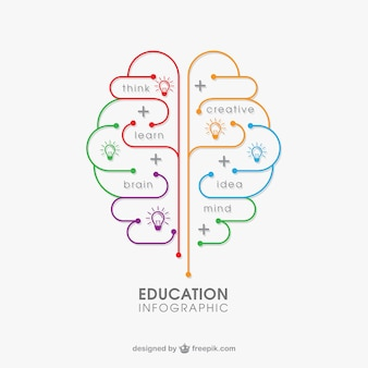 Education infographie