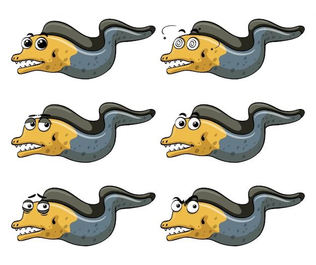 Eel avec différentes émotions