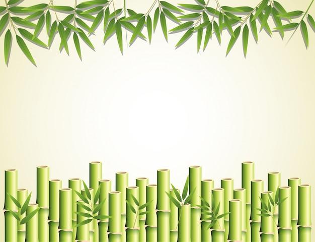 Effet de bambou avec feuilles et tiges