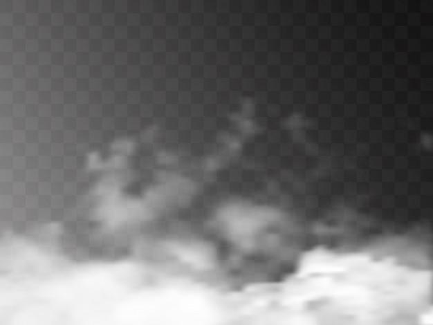 Un effet spécial transparent se démarque avec du brouillard ou de la fumée.