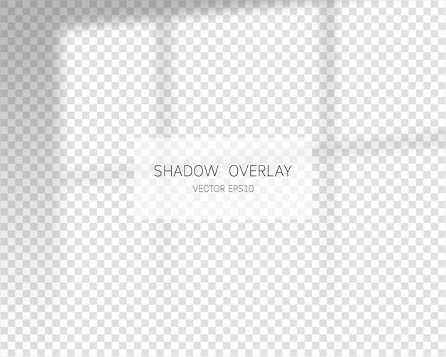 Effet de superposition d'ombre. ombres naturelles de la fenêtre isolée