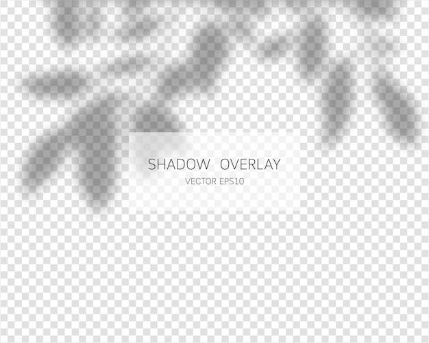 Effet de superposition d'ombre. ombres naturelles isolées sur fond transparent.