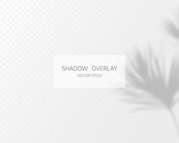 Effet de superposition d'ombre. ombres naturelles isolées