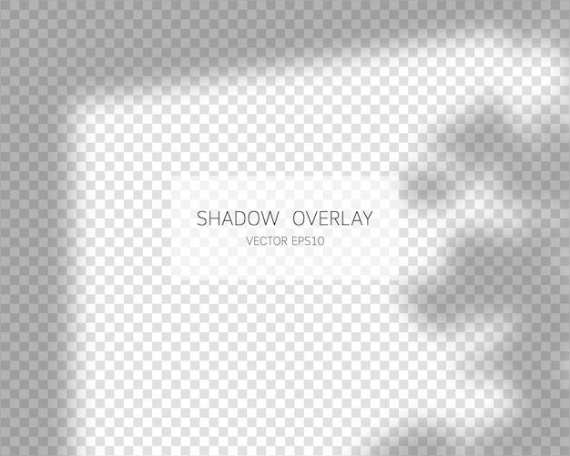 Effet de superposition d'ombres ombres naturelles de la fenêtre isolée sur fond transparent