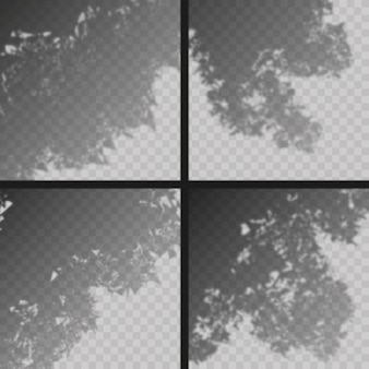 Effet de superposition d'ombres transparentes