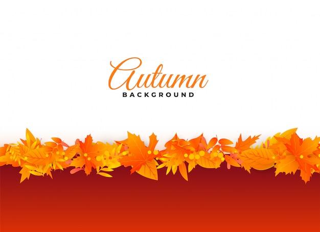 Élégant fond d'automne laisse la conception