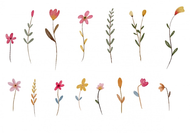 Élément aquarelle fleur jardin
