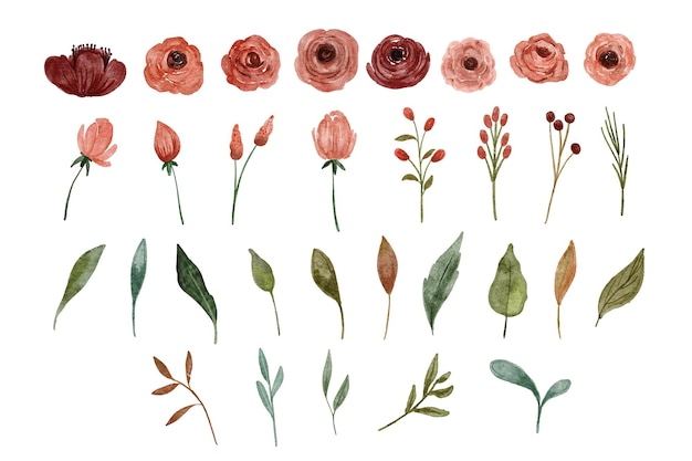 Élément d'aquarelle rose et feuille