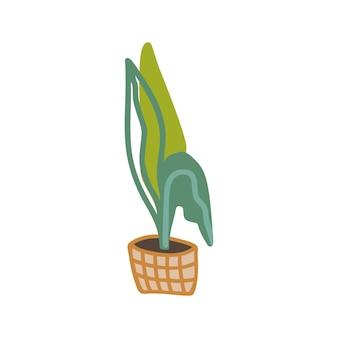Élément dessiné à la main mignon de pot de fleur à la maison. panier en osier. doodle plantes d'intérieur illustration vectorielle. isolé sur fond blanc.