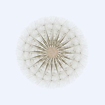 Élément d'impression designt plat fleur de pissenlit unique