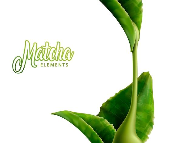 Élément de matcha avec des feuilles vertes et sauce isolée