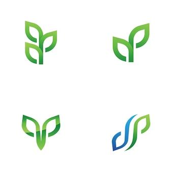 Élément De Nature écologie Feuille Verte Arbre Vecteur Premium