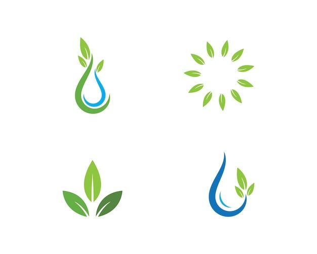 Élément de nature écologie feuille verte