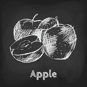 Élément d'utilisation de conception dessinée à la main illustration croquis pomme