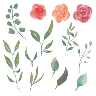 Éléments Aquarelle Fleur Et Feuille Vecteur Premium
