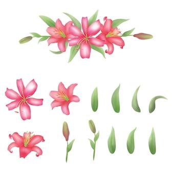 Éléments d'aquarelle de fleur de lerios