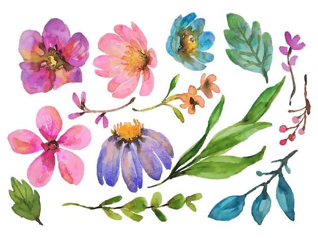 Éléments d'aquarelle de fleurs