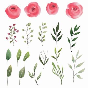 Éléments aquarelle rose et feuille