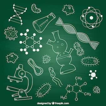 Éléments de biologie sur tableau noir