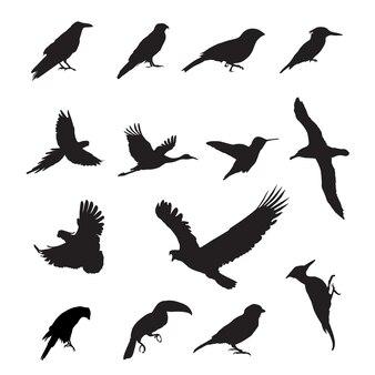 Éléments de conception de silhouettes d'oiseaux noir sur fond blanc