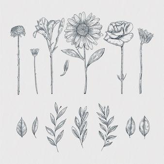 Éléments décoratifs floraux dessinés à la main