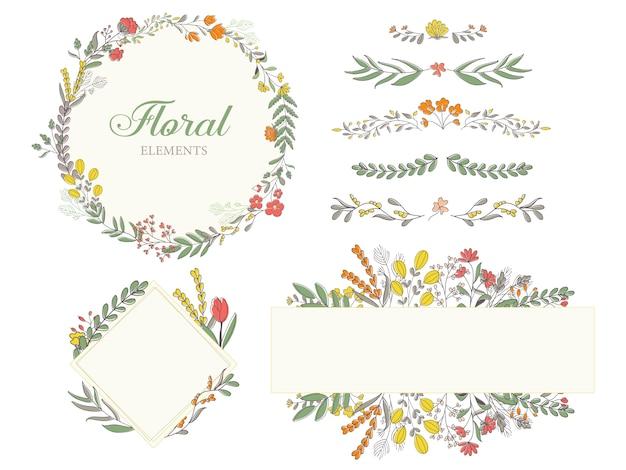 Éléments de décoration florale dessinés à la main, illustrations, cadre, collection de diviseurs.