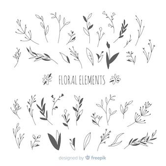 Éléments de décoration florale incolores dessinés à la main