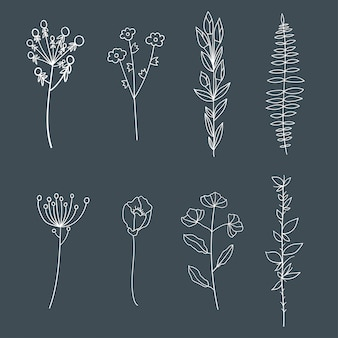 Éléments floraux élégants vintage dessinés à la main.