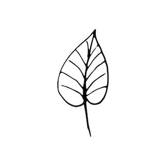 Éléments floraux mignons dessinés à la main. illustration vectorielle de doodle pour la conception de mariage, le logo et la carte de voeux.