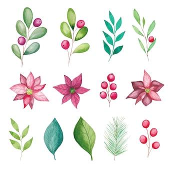 Éléments floraux de noël aquarelle, fleurs de poinsettia, baies, feuilles, branches de sapin